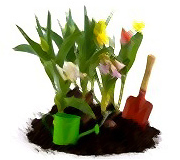 Creación y Mantenimiento Jardineria Riojana SL