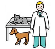 Clínica Veterinaria Albéitar